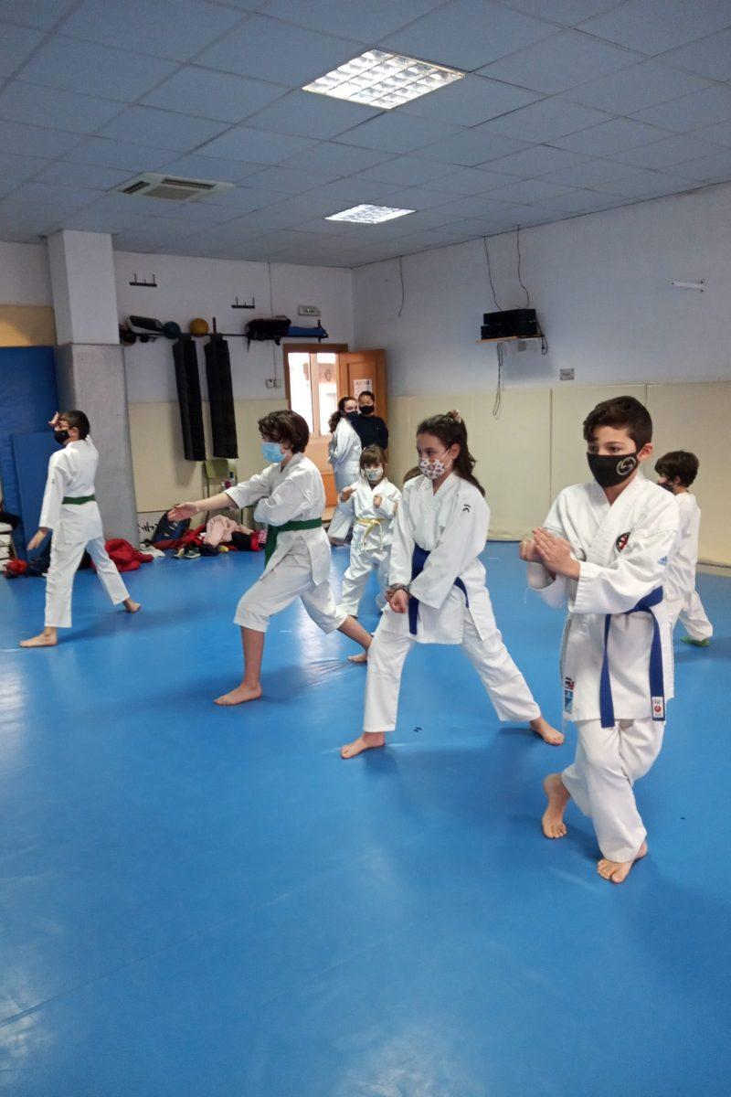 karate infantil foto